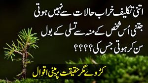 Amazing Collection Of Urdu Hindi Quotes | Quotes About Life | Whats App Status Quotes | Nayab aqwal