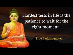 Powerful buddha quotes that can change your life|buddha quotes about Life| inspiring quotes