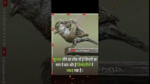 🌾शौक🌾Best Life Time Motivation Quotes Status Video 🔥#shorts