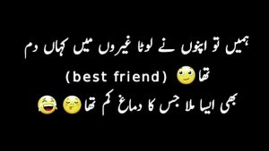 Funny Poetry and Quotes in Urdu 21
