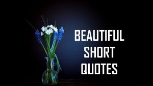 Beautiful Short Quotes   Life Lessons