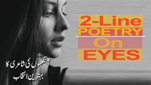 Eyes 2 Line Poetry | Heart Touching Poetry | Aankhon Par Shairy | HD Collection