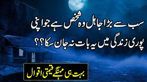 Heart Touching Urdu Quotes | Sad Urdu Poetry | Quotes About Life Lessons | Best Urdu Poetry |