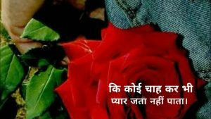 Izhare Ishq Emotional Shayari Propose Day SMS Quotes
