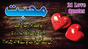 Mohabbat 21 quotes in hindi urdu with voice and images || Mohabbat golden words in hindi urdu