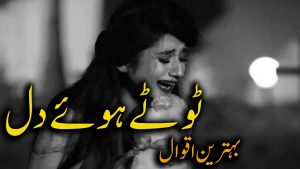 Mohabbat 30 quotes in hindi urdu with voice and images || Amazing golden words – LoveToqeer