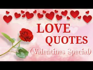 Most Beautiful Love Quotes For Valentine's Day Top 40