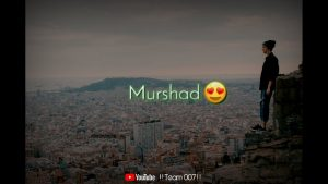 Murshad sad shayari status | whatsapp | status |  |lyrics | love |
