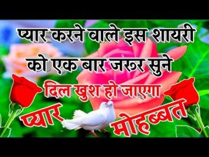 New Love Shayari 2021🌹New Love Shayari In Hindi 🌹 Pyar Mohabbat shayari