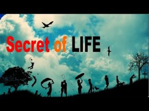 Reality of Life   Inspirational Videos About Life in Hindi   Must Watch