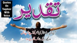Taqdeer Best Quotes and Poetry in Hindi Urdu with voice and images || Golden words collection