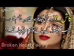 Top 30 Best 2 Line Poetry | Most Heart Touching Poetry | Sad Urdu Poetry | Hindi Shayari | Fk Poetry