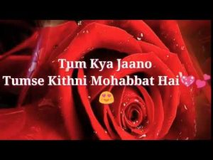 ♥️Tum Kya Jaano Tumse Kithni Mohabbat Hai💕| Hindi shayari in English❤️| WhatsApp status🌹💏😘
