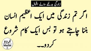 Urdu Quotes   Beautiful Quotes About Life   Quotes Status In Urdu Hindi   Hindi Quotes About Love