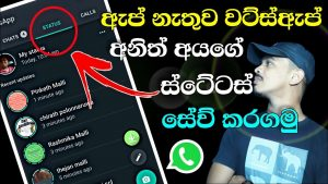 Whatsapp Status Video & Photo Download Without Any App Sinhala