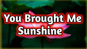 You Brought Me Sunshine | Love Poem | Love Quotes | Love Poems for him her