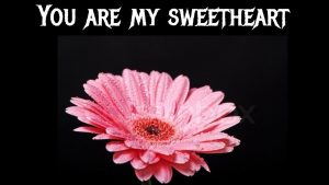 You are my sweetheart/love poems/love quotes/love messages/Glowish
