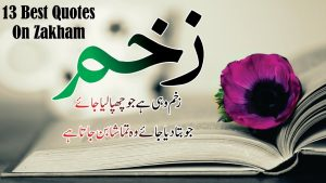 Zakham 13 best Lines in Hindi Urdu quotes with voice and images || Golden words Quotes