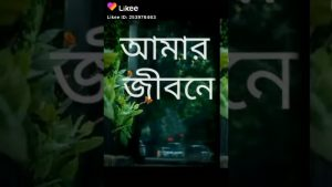 #sj_bangla Sj Bangla Bangla shayari _ Bangla WhatsApp status video _ Sanjit Barman (বাংলা সায়রী)