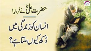 Best Collection Of Hazrat Ali Quotes | Rj Shan Ali | Hazrat Ali (R.A) Heart Touching Quotes In Urdu