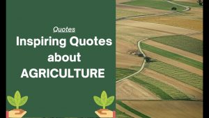 Inspiring Quotes about Agricultural | Quotes about Farmers| Save Farmers