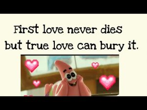 Love quotes❤️.Love is life🎉