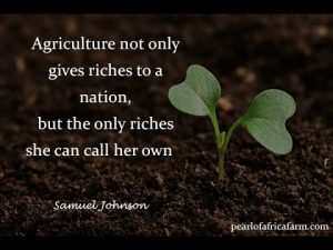 Quote about Agriculture || Sharing Quotes