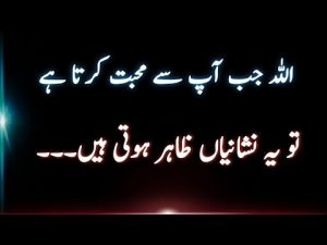Quotes about ALLAH | best collection of islamic urdu quotes | Islamic urdu quotes