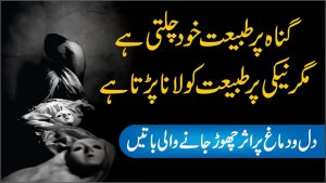 Reality Quotes in Urdu   what is Life   Quotes in Urdu   Urdu Heart Toching Quotes about Life
