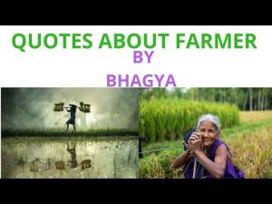 quotes/slogans about farmers by bhagya/23rd dec -national kisan diwas 🌾🌾🌿🌿🌳🌳🍃🌱🌱