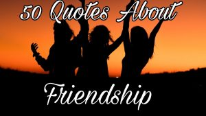 Best Quotes About Friends / Beautiful Friendship Quotes /Quotes For Bestfriends
